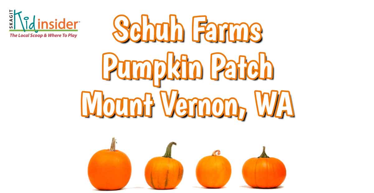 Schuh Farms Pumpkin Patch in Mount Vernon, WA