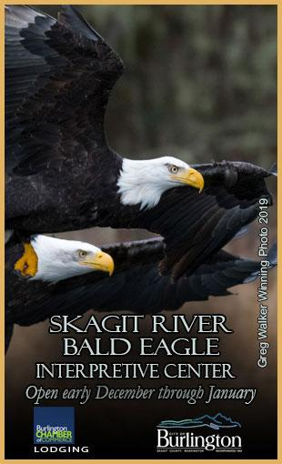Skagit River Bald Eagle Interpretive Center
